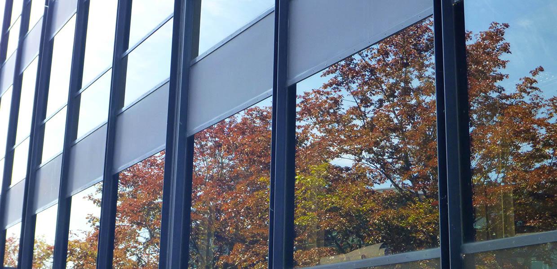 Ikkunoiden Pesu Hinta